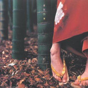 【完全受注限定生産】幻の「ヒバリのこころ」収録『花鳥風月+』CD・アナログ盤でリリース決定!各ショップで予約開始!他『色色衣』『おるたな』も初のアナログ化! スピッツ