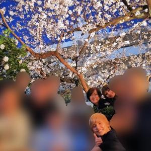 ■総理夫人が この時期レストランで桜という・・・何と言うかもう・・