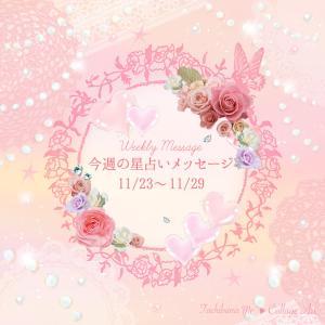今週(11/23〜11/29)の星占い*12星座エレメント別メッセージ