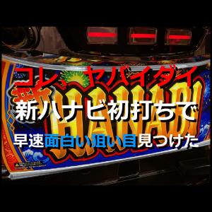20210709【実戦記録】新ハナビ初打ち!┗('ω')┛4日間の「遅れ」を取り戻す。枠下赤七狙い。