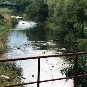 CONTAX G1と秋の川