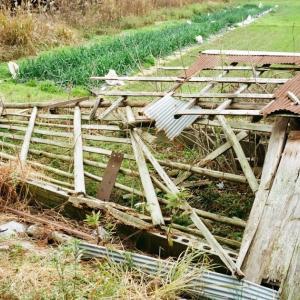 MINOLTA TC-1と崩壊した小屋