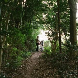 KONICA HEXARと林の中の小道