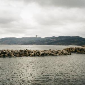 MINOLTA TC-1とトンビが舞う海