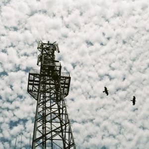PENTAX MZ-3とパンケーキレンズと巻積雲と携帯電話基地局より飛び立つカラス