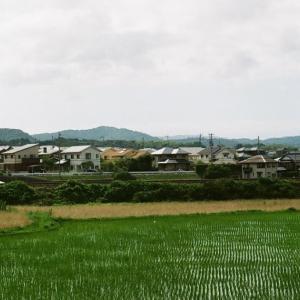 PENTAX MZ-3と稲の伸びた田圃と長門市街
