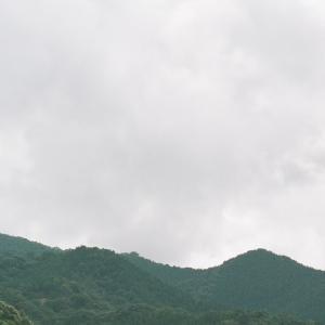 PENTAX 67と水田と山々