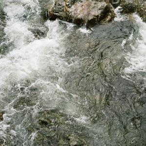 CONTAX G1と濁流渦巻く大寧寺川