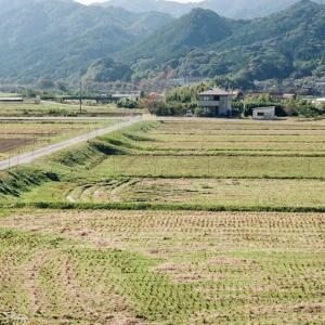 CONTAX G1と稲刈りの終わった田んぼと山々