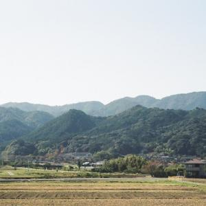 CONTAX G1と長門の山々、田圃