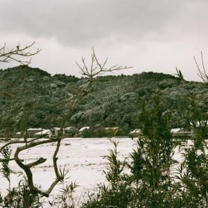 CONTAX G1と雪の長門