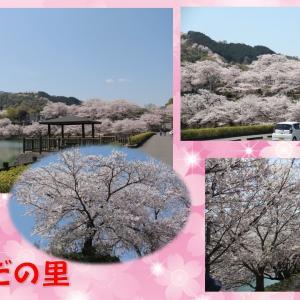 桜満開の「たからだの里」