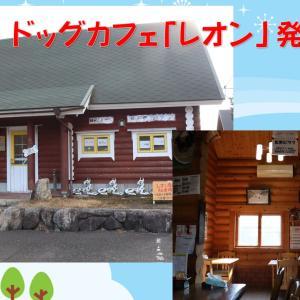 ドッグカフェから大山へ