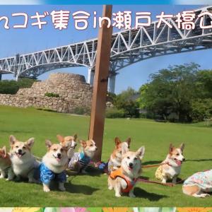瀬戸大橋公園に10コギ