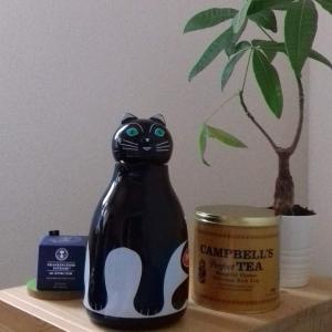ホラーな黒猫さん❤️