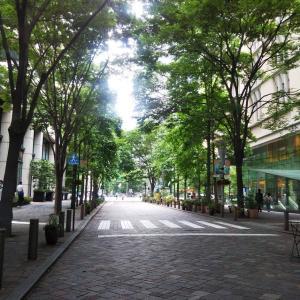都会の森林浴