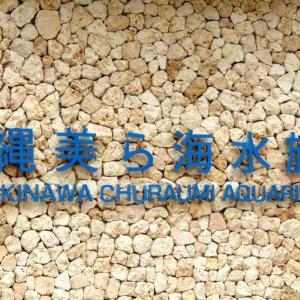 弾丸沖縄旅行 201907 ④ 美ら海水族館