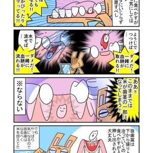 抜歯・8 抜歯窩と米