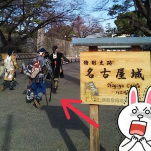 55キロ走ってきた(*・ω・)ノ【さくら道国際ネイチャーラン試走】