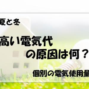 夏と冬の電気代が高い原因 わが家の電気使用量を公開!!