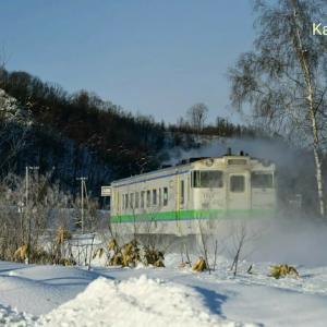 美瑛から岩内へ!JR北海道&バスの旅。