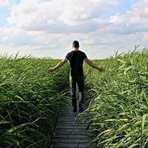 長距離自然歩道は何kmある?リタイア後に向けて調べてみた