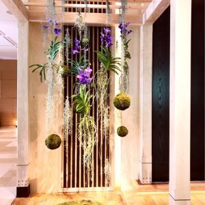 フォーシーズンズホテル京都★スイートルームに宿泊