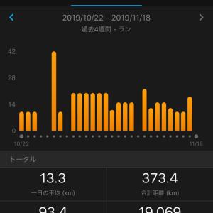 つくば1週間前 ペース走10km