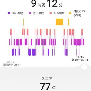 5月1〜14日までのジョギング走行距離
