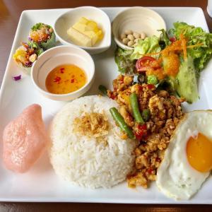 本格タイ・東南アジア料理が楽しめるアジアンキッチン『ジャスミン』湘南・鵠沼海岸駅前商店街に1月オープン!