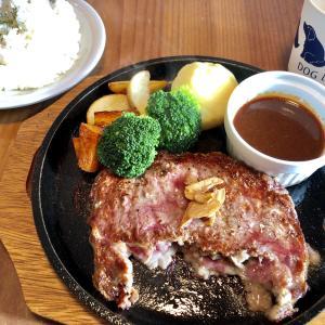 『DOG DEPT+CAFE(ドッグデプト)湘南江ノ島店』カフェランチメニューも充実♪わんこ連れじゃなくても楽しめます!