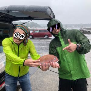 お食い初め用の真鯛を釣りマッスル!!