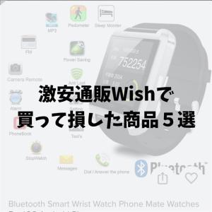 激安通販Wishで買い物をして損した商品5選