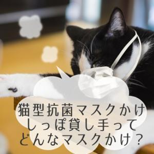 【猫型抗菌マスクかけ】しっぽ貸し手フック|ちょっと外したマスクどこに置いておく?