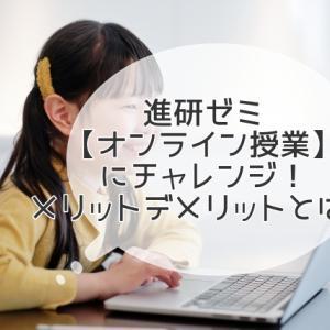 追加受講費0円【進研ゼミ オンライン授業】にチャレンジ!メリットデメリットとは?