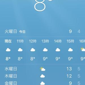 寒い:(;゙゚'ω゚'):