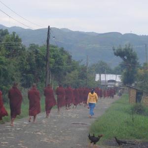 感染症と朝もやのインレー高原(Ⅱ)