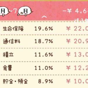 [家計簿]6月〜7月分(´・ω・`)
