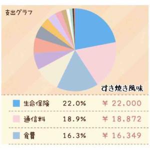 [家計簿]7月〜8月分(´・ω・`)