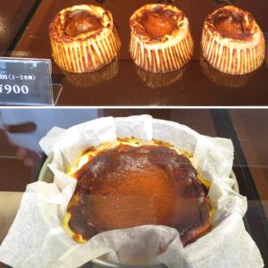 バスクチーズケーキ専門店GOZOオープンと円山公園のヤマゲラ、犯人はエゾリスさんです!