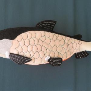 精進川サクラマス滝登り!慌てて鮭子仕上げたけれど筋子作るの面倒だわ!