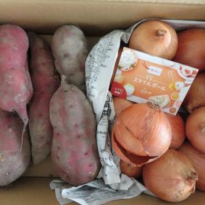 試される大地のサツマイモはシックスパック!マイ出汁パック2日目はドライマッシュルーム!