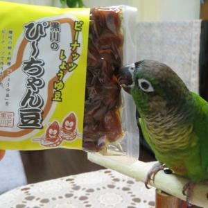 ぴ~ちゃん豆(四国)くぢら餅(山形)、松魚つぶ(高知)郷土料理・菓子は面白美味しいな!