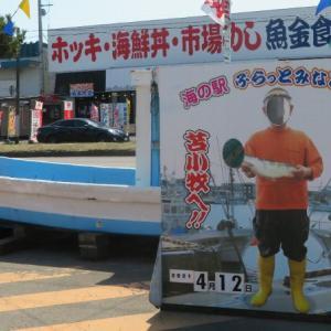 苫小牧名物マルトマ食堂ホッキカレー リベンジならず…超本ズワイガニ丼3500円らしいよ
