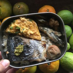 みかんとレモンの収穫と甘めのインゲン入り卵焼き