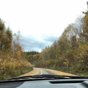 これが高速道路??今、北海道は紅葉真っ盛り!