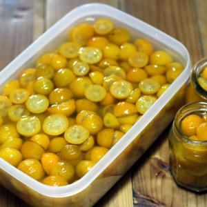 今週作った秋田の郷土料理と金柑の甘露煮