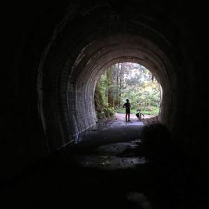 サイクリングで行く八幡浜 大峠隧道のダブルトンネル