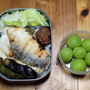 9月21・24日のお弁当。市場の魚と釣った魚