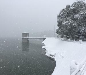 立春に満濃池に雪が降りました
